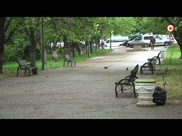 В Нахимовском районе выбирают общественное пространство для благоустройства (СЮЖЕТ)