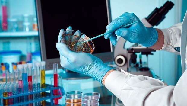 На базе «ВНИИЗЖ» и «ВГНКИ» будут созданы новые лаборатории молекулярной биотехнологии