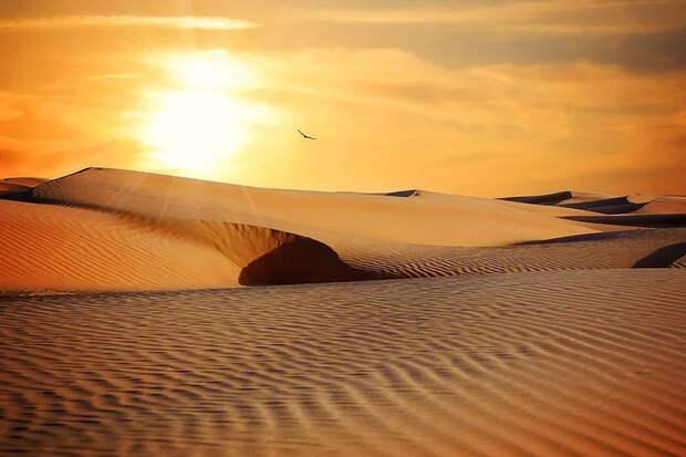 """Песчаные дюны могут """"общаться"""" друг с другом"""