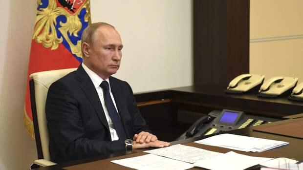 Правительство подготовит проект о ведении учета домашних животных по поручению Путина