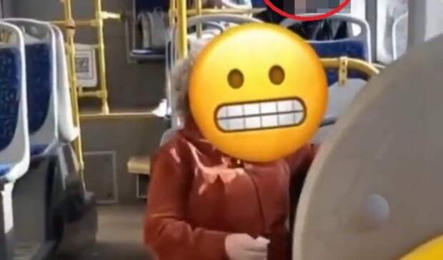 Посланница Сатаны: кричащая женщина вавтобусе перепугала жителей Владивостока
