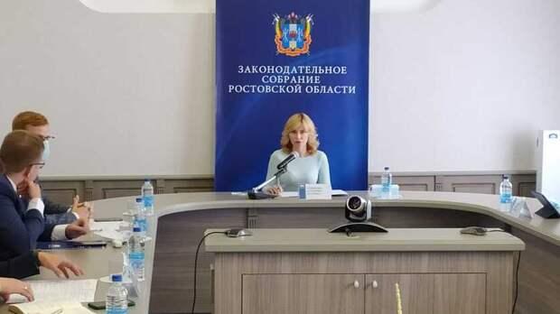 Донские парламентарии обсудили меры поддержки молодежных общественных организаций