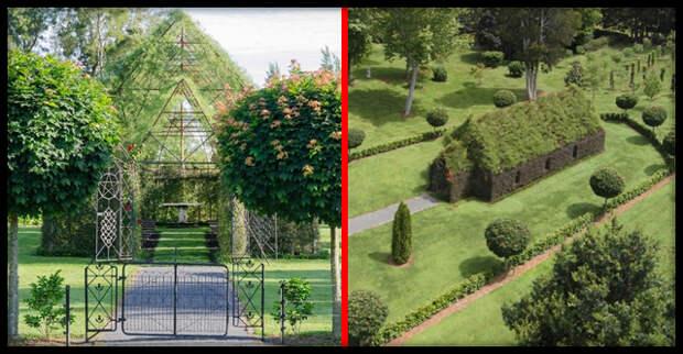 Американец за 4 года вырастил церковь из деревьев на заднем дворе