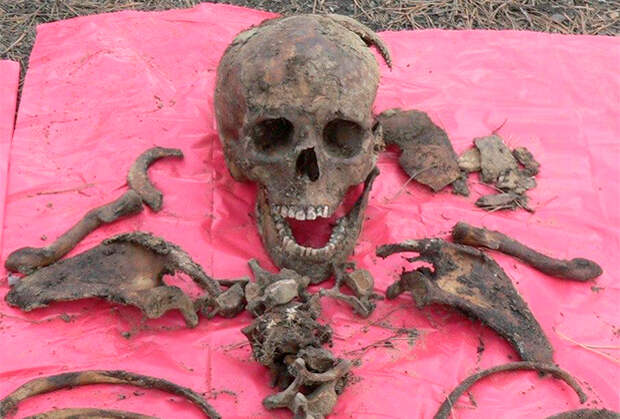 Останки одной из жертв Михаила Попкова
