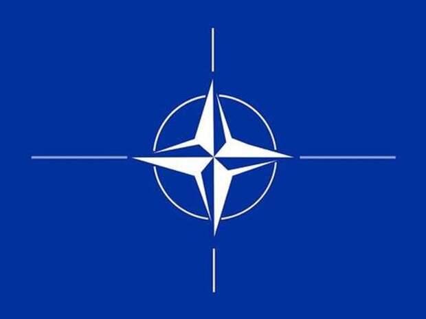 НАТО поддерживают объявленные США «меры реагирования на дестабилизирующую деятельность РФ»