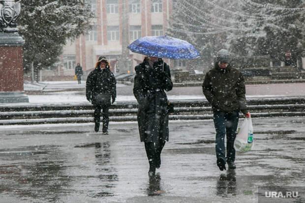 Европейскую часть России накроет снег