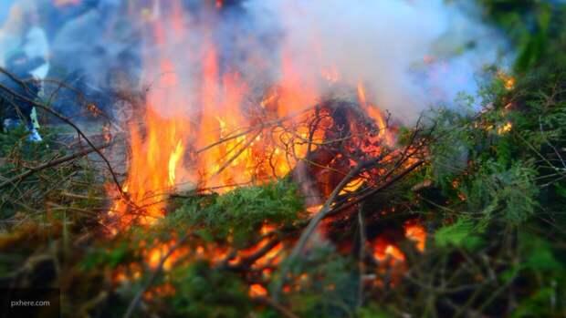 Жертвами лесных пожаров на западе США стали более 20 человек