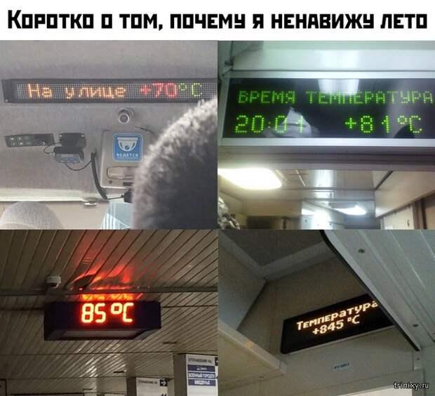 Лето - такое долгожданное и... жаркое (23 фото)