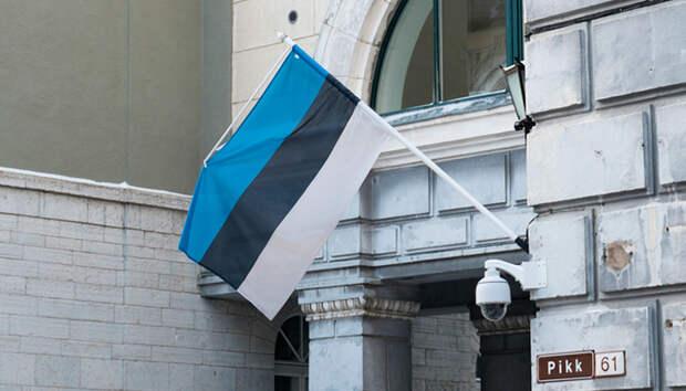 Русскому Слону пора наступить на эстонскую Моську