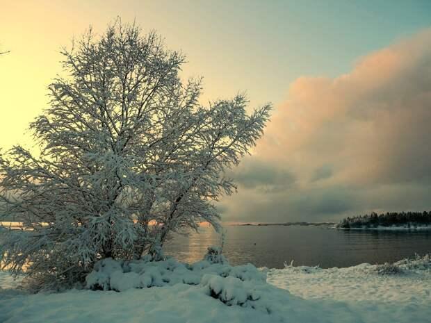 Красоты России (#605)