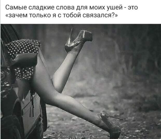 - Руки женщины должны дрожать от подарков, ноги - от секса, а сердце - от любви...