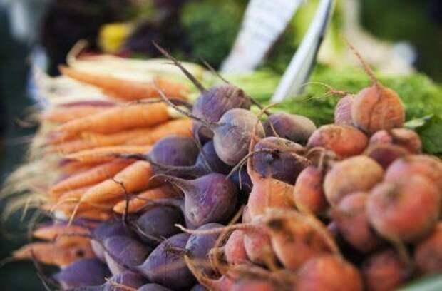 9 огородных культур, которые хорошо растут в тени