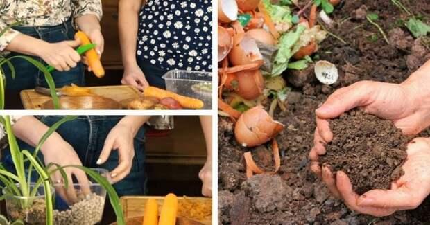 Вот как сделать чудо-компост из кухонных отходов без запаха и мушек