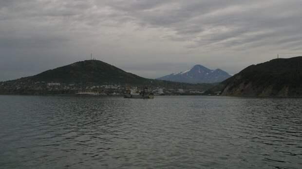 Ученые заявили о природном характере экологического происшествия на Камчатке