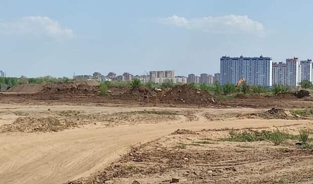 При строительстве дороги наулице Рокоссовского вырубят 43 дерева икустарники