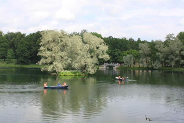 В Гатчинском парке