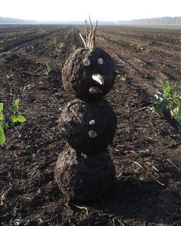 Когда невероятно хочешь сделать снеговика Безумцы, идиоты, как скучно я живу, россия, смешно, фото, что вытворяют