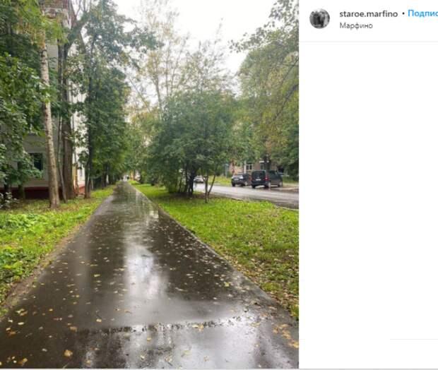Фото дня: в Марфино пришла осень