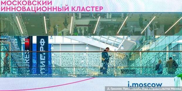 В Москве заработал новый онлайн-сервис для бизнеса — Сергунина. Фото: Д. Гришкин mos.ru