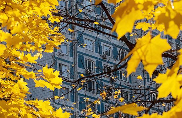 В Москве 20 октября будет самым холодным днем недели