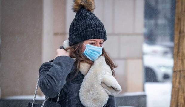 Около десяти лет: названы сроки окончания эпидемии коронавируса в России