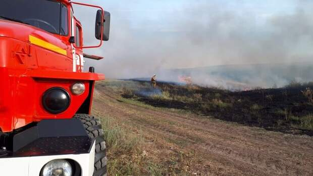 Разводить костры запретили навсей территории Ростовской области