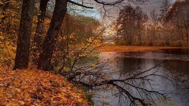 В выходные в Красноярске ожидается до +9 градусов