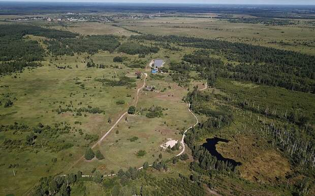 Коронавирус в Рязанской области: 14 июня
