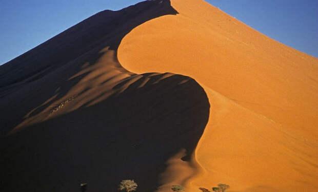 Какая толщина слоя песка в пустынях: ученые измерили глубину