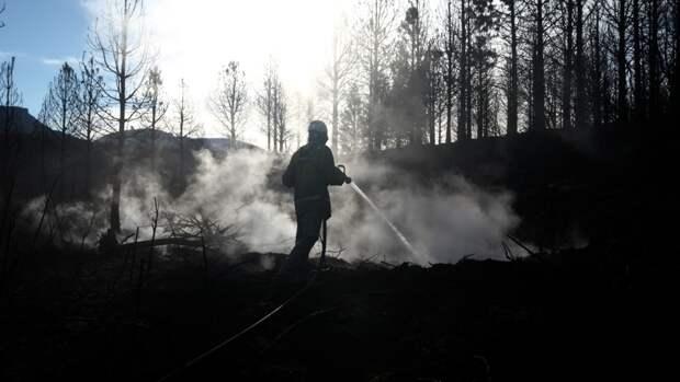 Количество лесных пожаров в России значительно сократилось за последние сутки