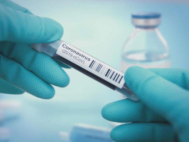 В России формируются два новых штамма коронавируса....