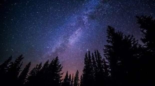 Наблюдаем за звёздами и проводим время с семьёй