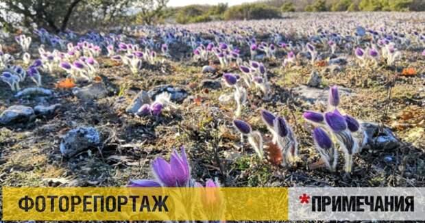 Крымская весна в горах