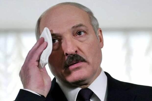 Российский политолог объяснил, как страх Лукашенко бьет по Кремлю
