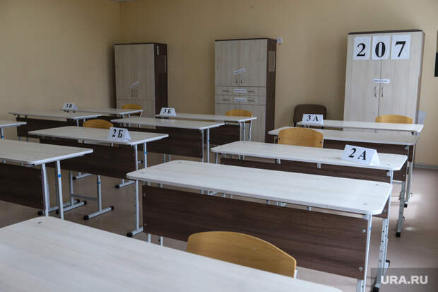 ВКурганской области ищут директоров школ идетсадов. «Стаж— неглавное»