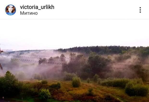 Фото дня: тревожный туман