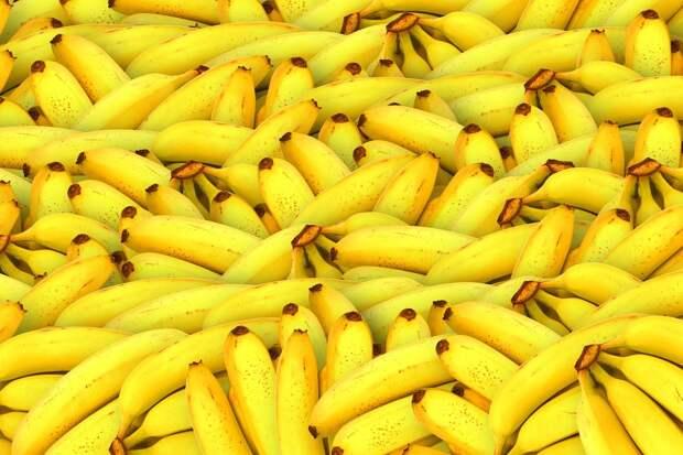 Правда или ложь: бананы могут исчезнуть из продажи?