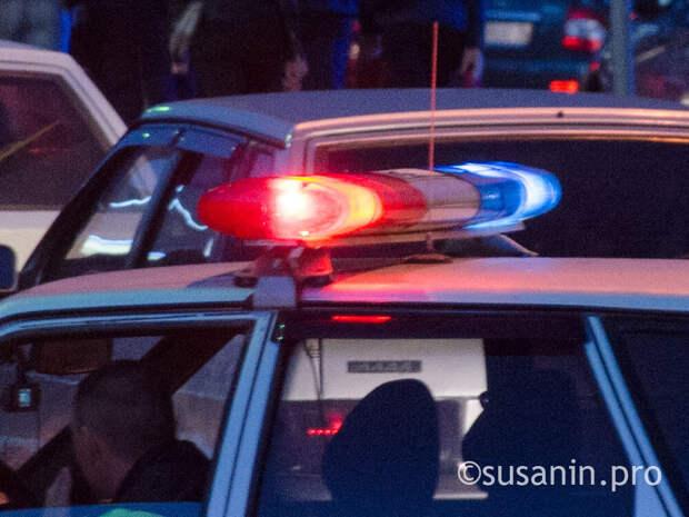 В Тульской области водитель насмерть сбил годовалую девочку