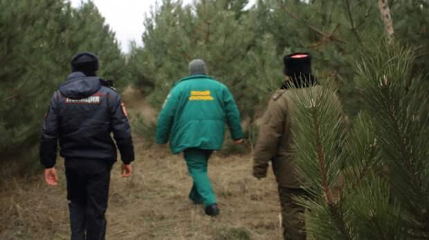 Массовую облаву набраконьеров устроили вРостовской области