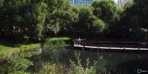 Мосприрода устроит праздник в парке «Покровское-Стрешнево»