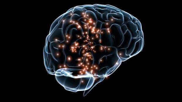 Как появился миф о том, что мозг работает только на 10%?