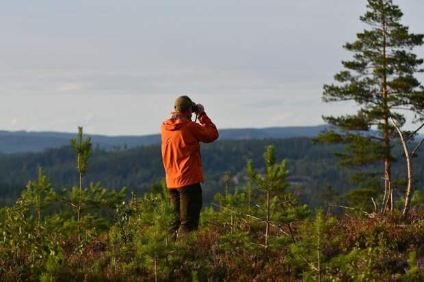 В лесу под Екатеринбургом пропал девятилетний турист