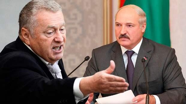 Жириновский провёл «стимуляцию» Александру Лукашенко