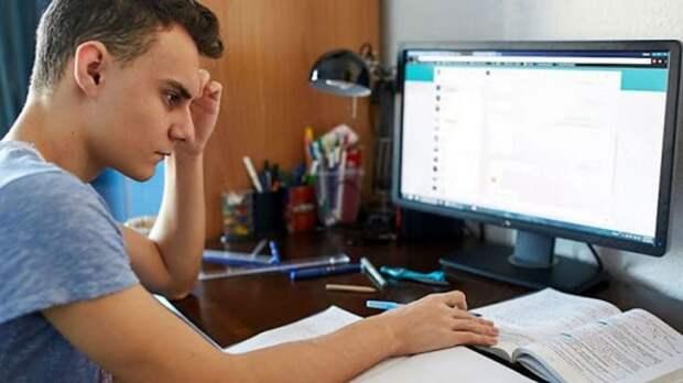Как проходит онлайн-обучение школьников в России