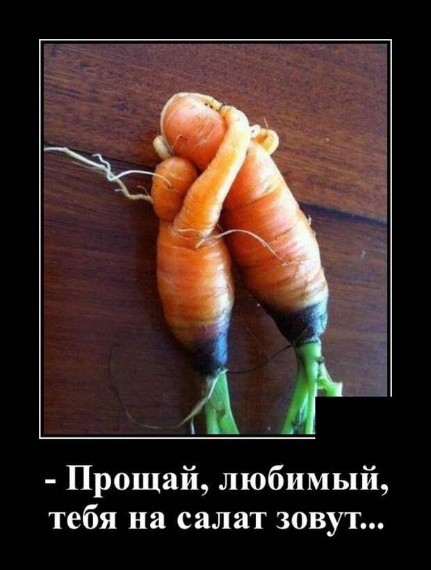 Демотиватор про овощи