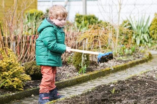 7 весенних советов для огородников