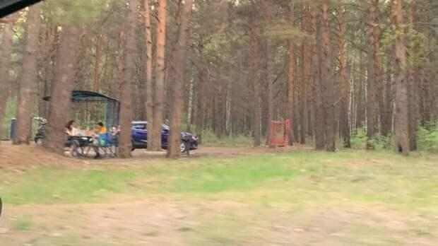 Тюменцы жарят шашлыки вдвух километрах отпожара около Андреевского озера