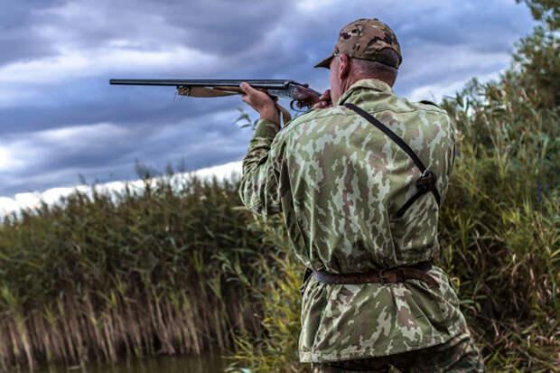 В Челябинске мужчина застрелил собаку на глазах у хозяйки из-за утки