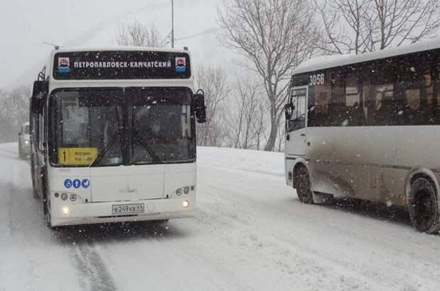 В школах столицы Камчатки отменены занятия в обе смены