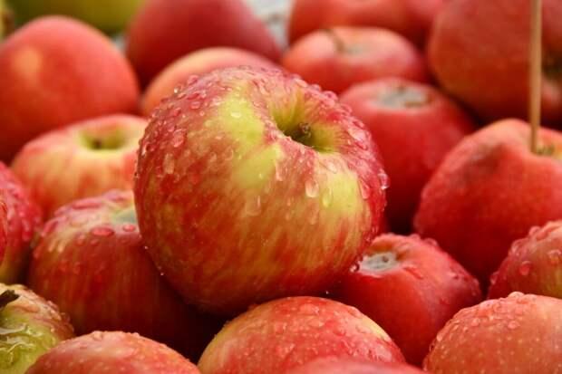 Зефир из свежих яблок: вкусный и полезный десерт